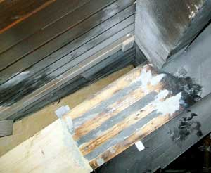 Rafter showing Structural Epoxy Resin after injection into slots.